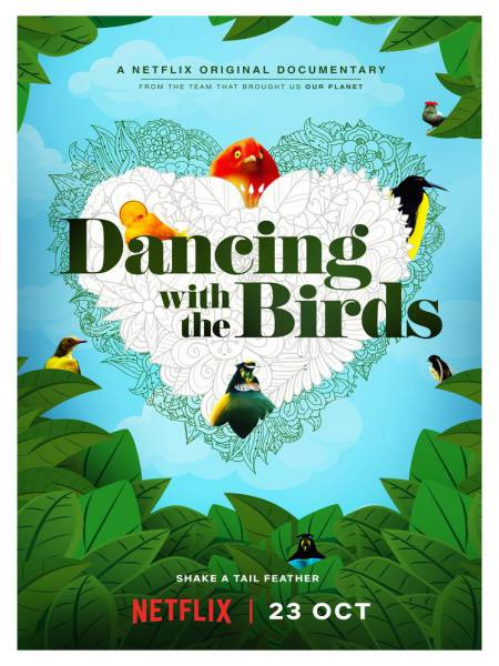 Dancing With The Birds